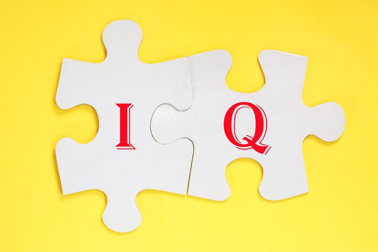 IQ puzzle pieces